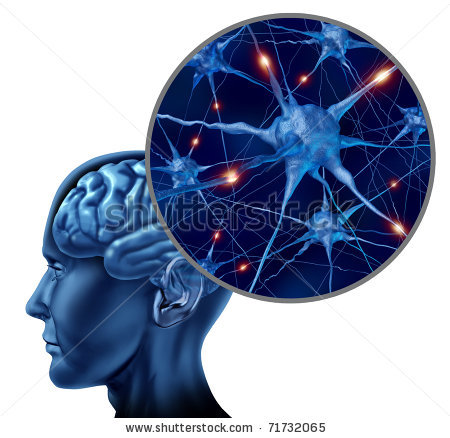 stock-photo-human-brain-medical-symbol-represented-by-a-close-up-of-neurons-and-organ-cell-activity-showing-71732065